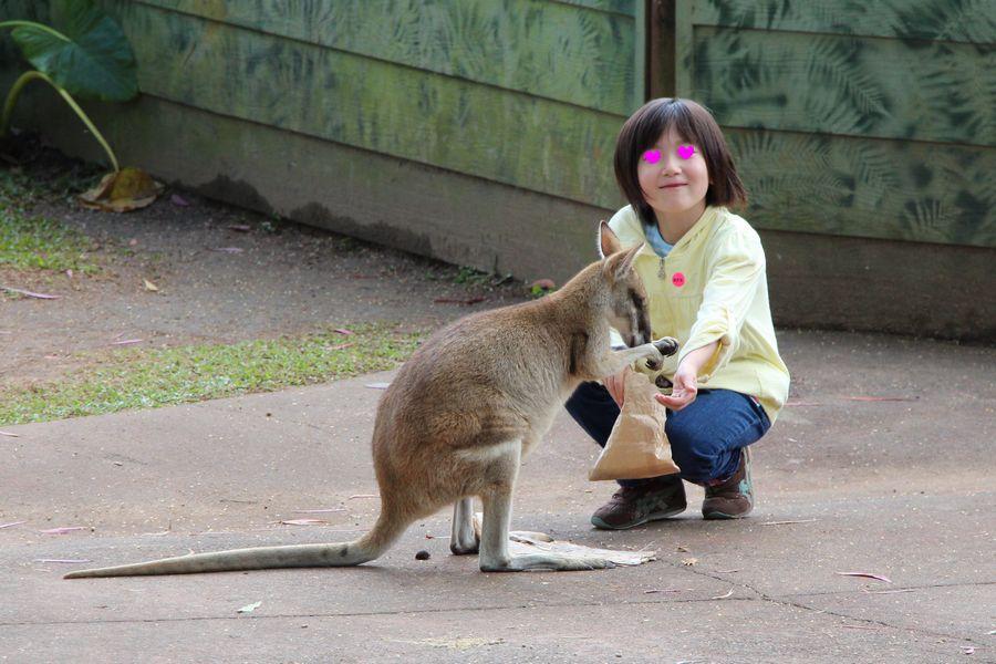 動物園 その2