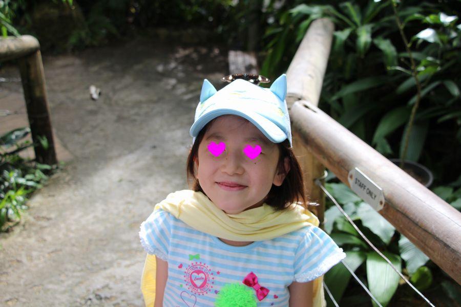 蝶園 その1