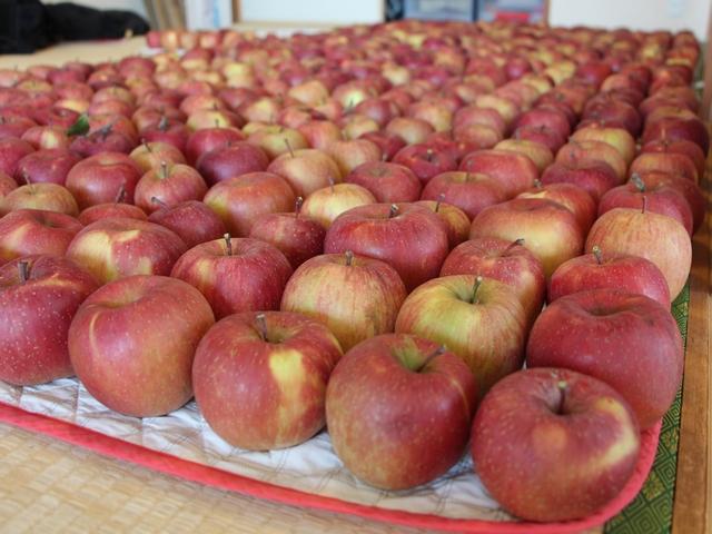 りんご その1