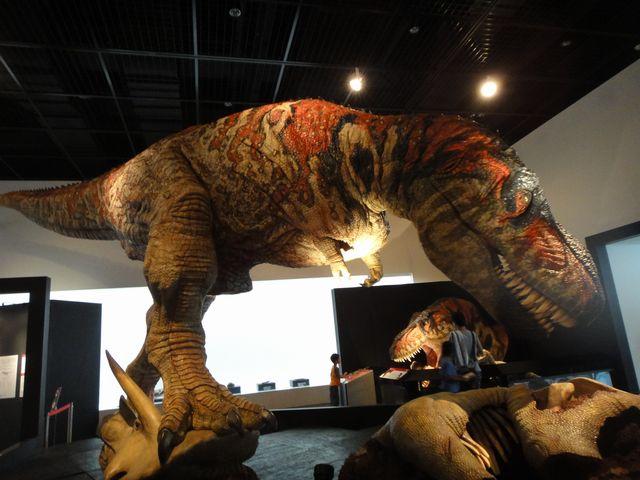 福井県立恐竜博物館 その2