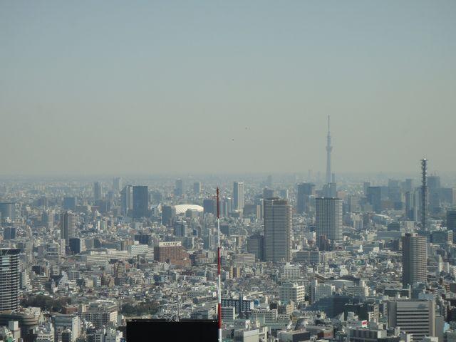 新宿 その4