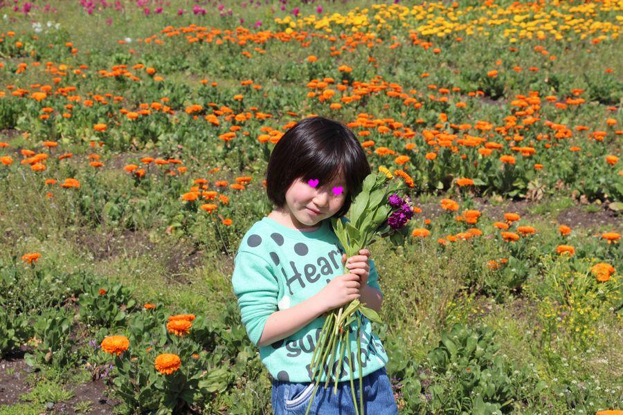 花摘み その2