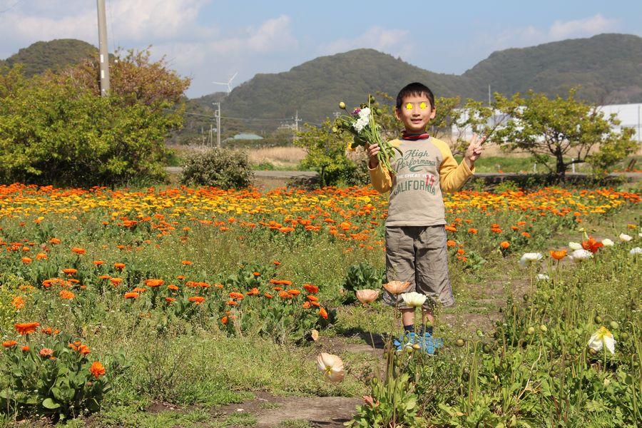 花摘み その1