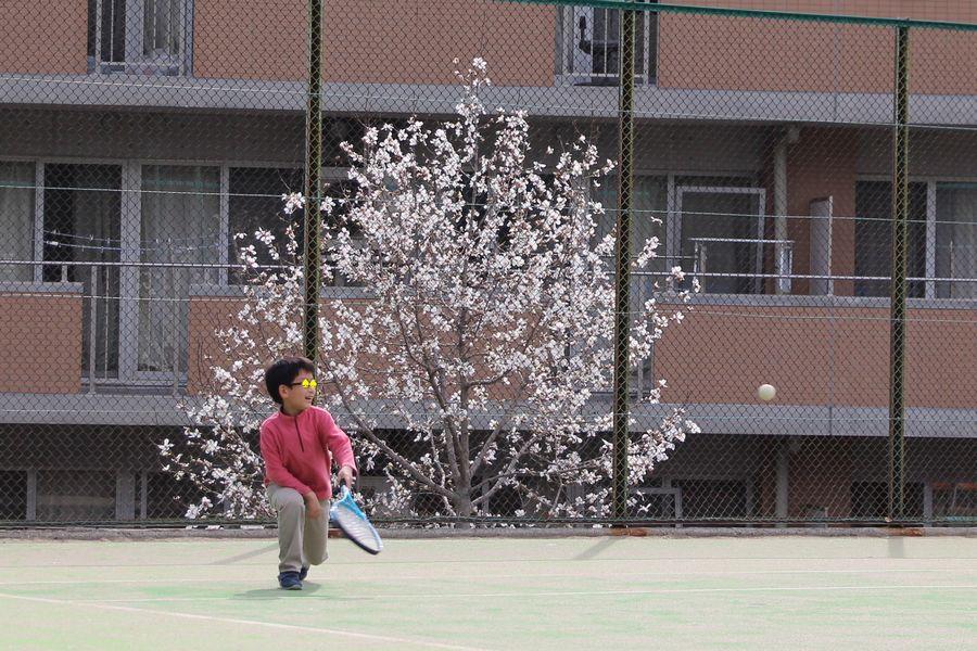 テニス その1