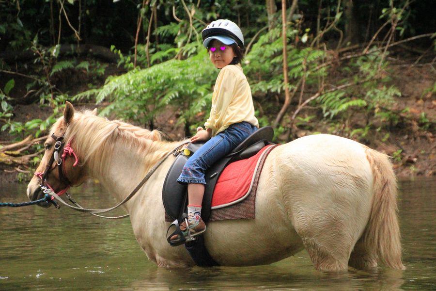 乗馬ツアー その3