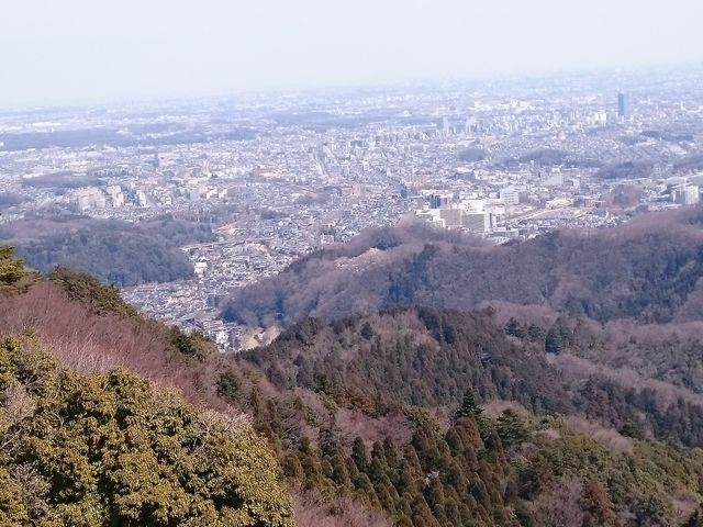 高尾山 その2