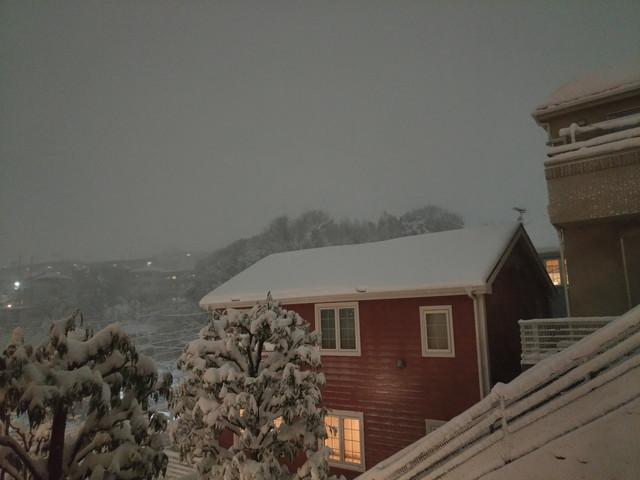 大雪 その2