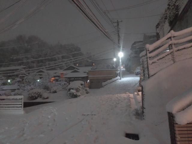 大雪 その4