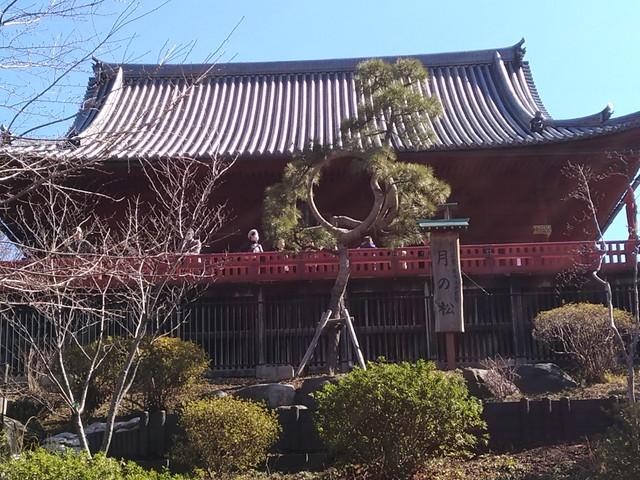 東京観光 その6