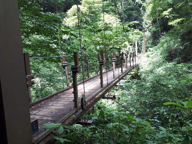 吊り橋 その2