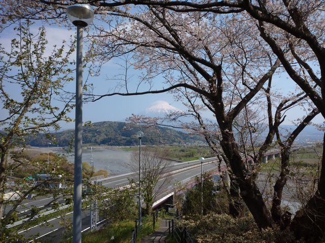富士川SA その3