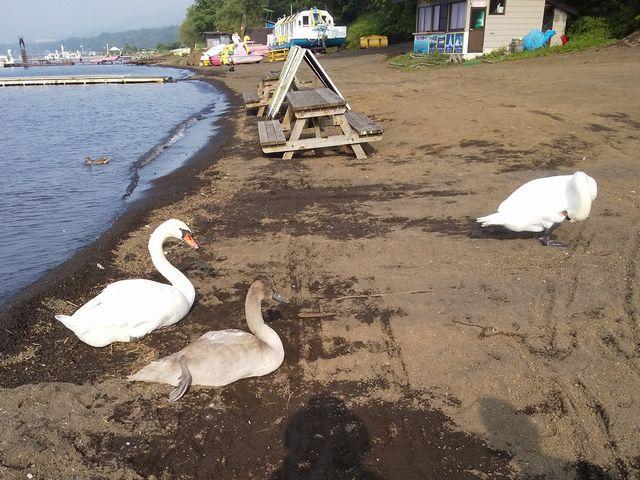 山中湖 その1