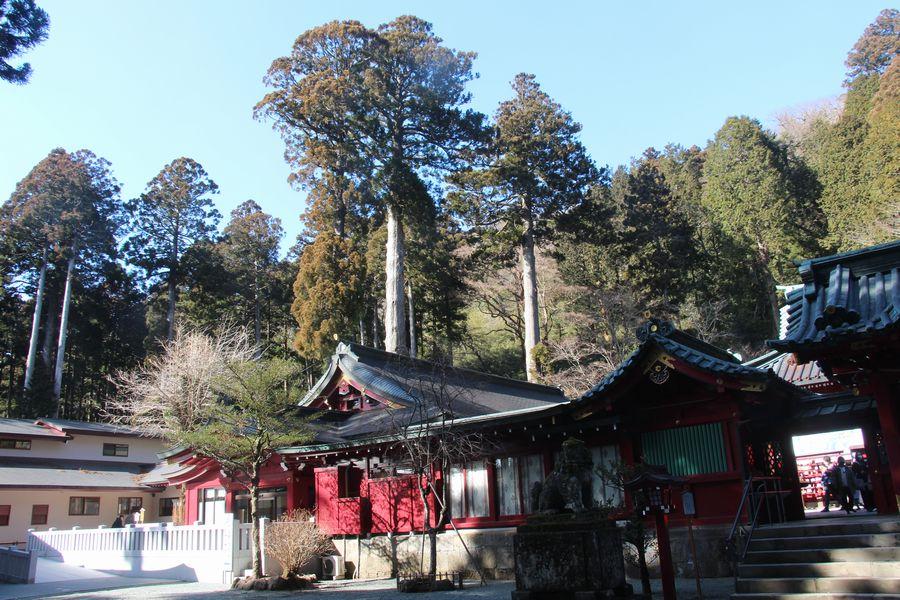 箱根神社 その2