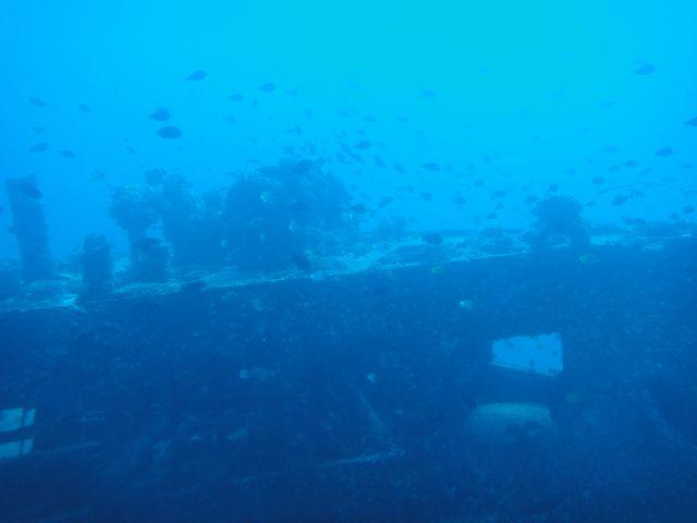 海中 その3
