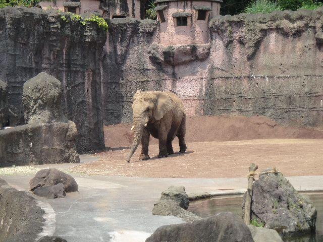 多摩動物公園 その5