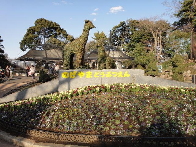 野毛山動物園 その1