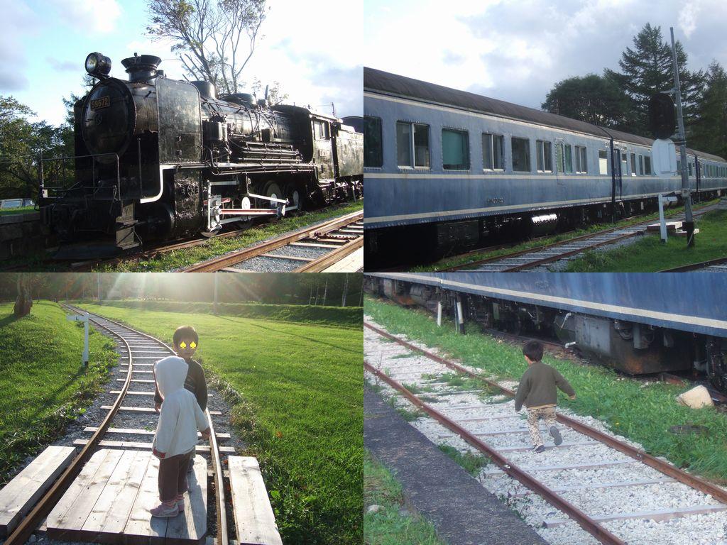 狩勝高原エコトロッコ鉄道
