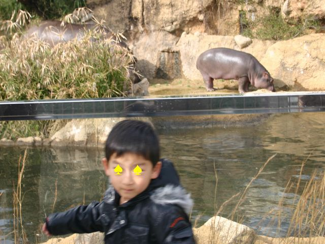 王子動物園 その3