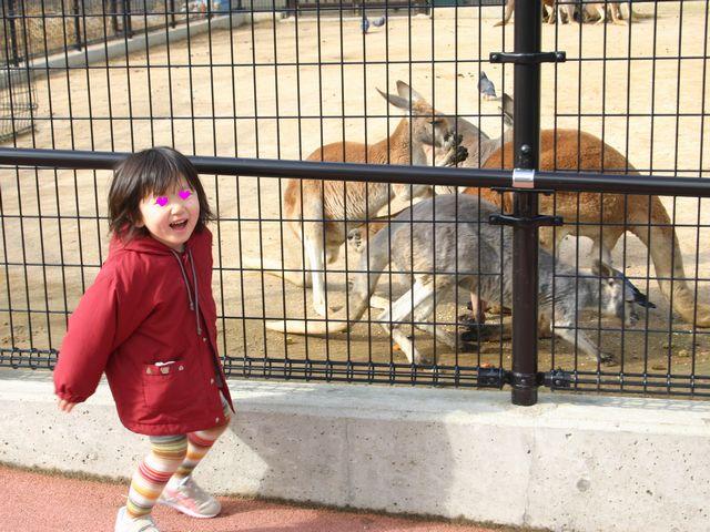 王子動物園 その4