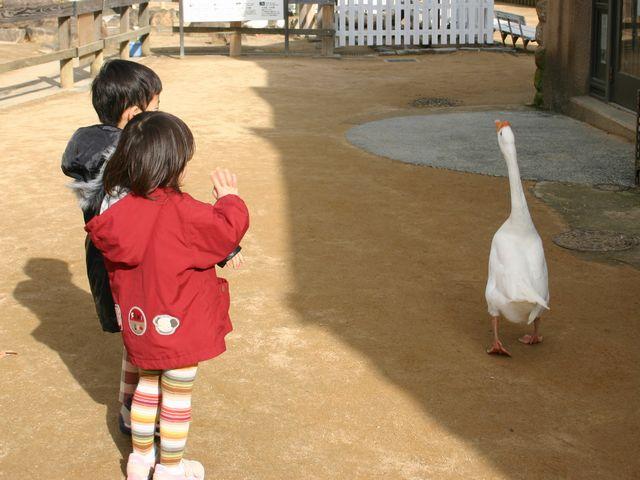 王子動物園 その6