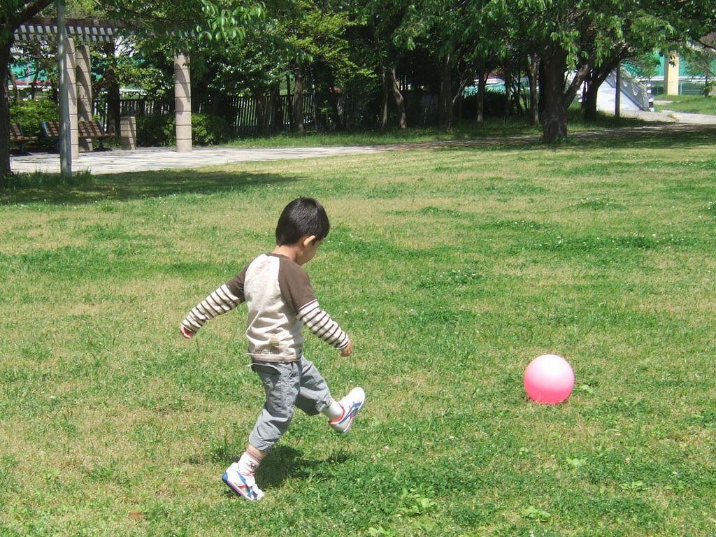 《とり》ボール遊び