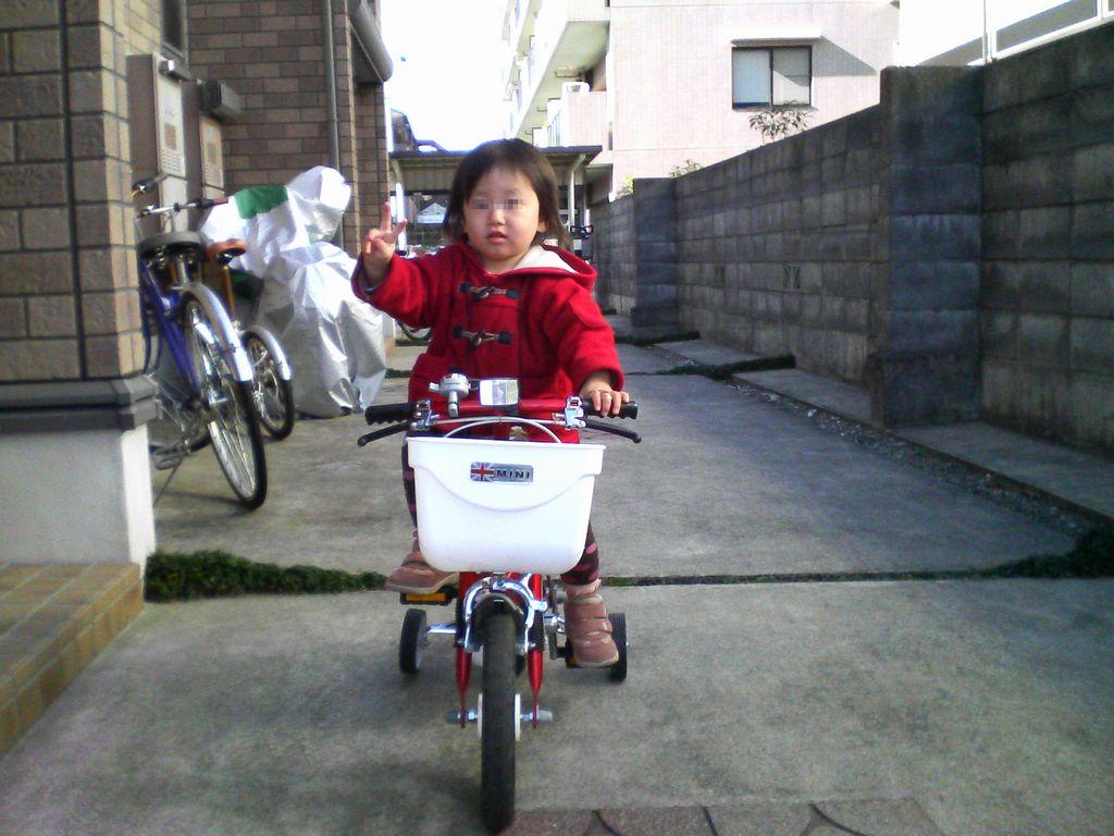 《いぬ》と自転車